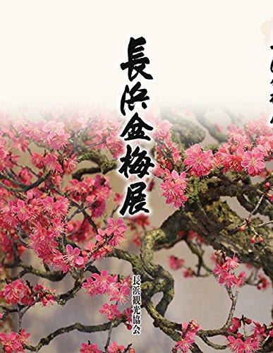 長浜盆梅展