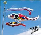 こいのぼり 鯉のぼり 岡本太郎 TARO 太郎鯉 こいのぼりのみ 【2010年新作鯉のぼり】
