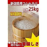 29年産 新潟県産 白米 コシヒカリ 25kg (検査一等米)桜井農園栽培