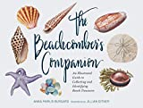 The Beachcomber's Companion: An Illustrated Guide to Collecting and Identifying Beach Treasures (Watercolor Seashell and Shell Collecting Book, Beach Lover Gift) 画像
