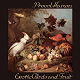Exotic Birds & Fruit