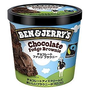 ベン&ジェリーズ チョコレートファッジブラウニー 120ml×36個