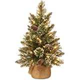 National Tree Company Pre-lit Artificial Mini Christmas Tree | Includes Small LED Lights, White Tipped Cones, Glitter Branche