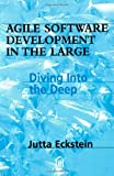 Agile Software Development in the Large: Diving Into the Deep