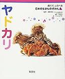 ヤドカリ 育てて、しらべる 日本の生きものずかん 9 (育てて、しらべる 日本の生きものずかん) (育てて、しらべる日本の生きものずかん)