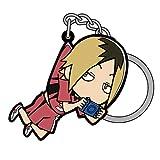 ハイキュー!! 烏野高校 VS 白鳥沢学園高校 孤爪研磨 つままれキーホルダー
