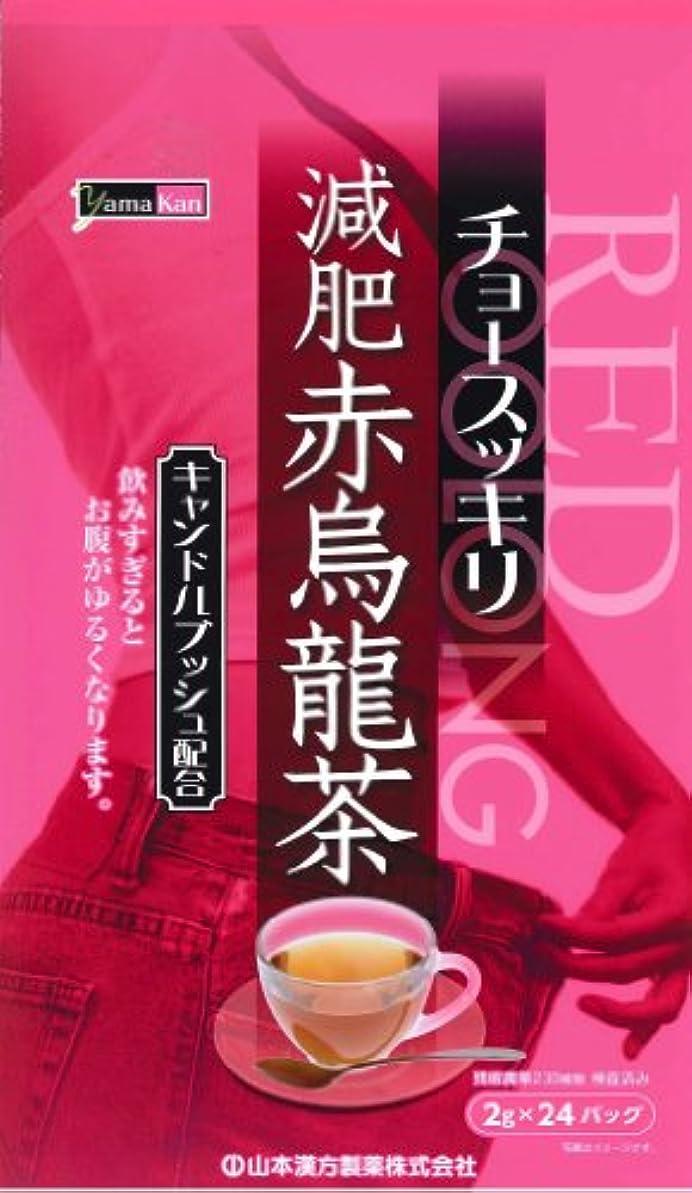 世界的にそう守る山本漢方製薬 減肥赤烏龍茶 8gX24H