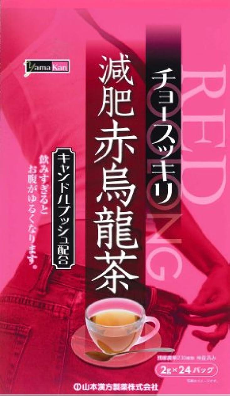 便利さブルームダーツ山本漢方製薬 減肥赤烏龍茶 8gX24H