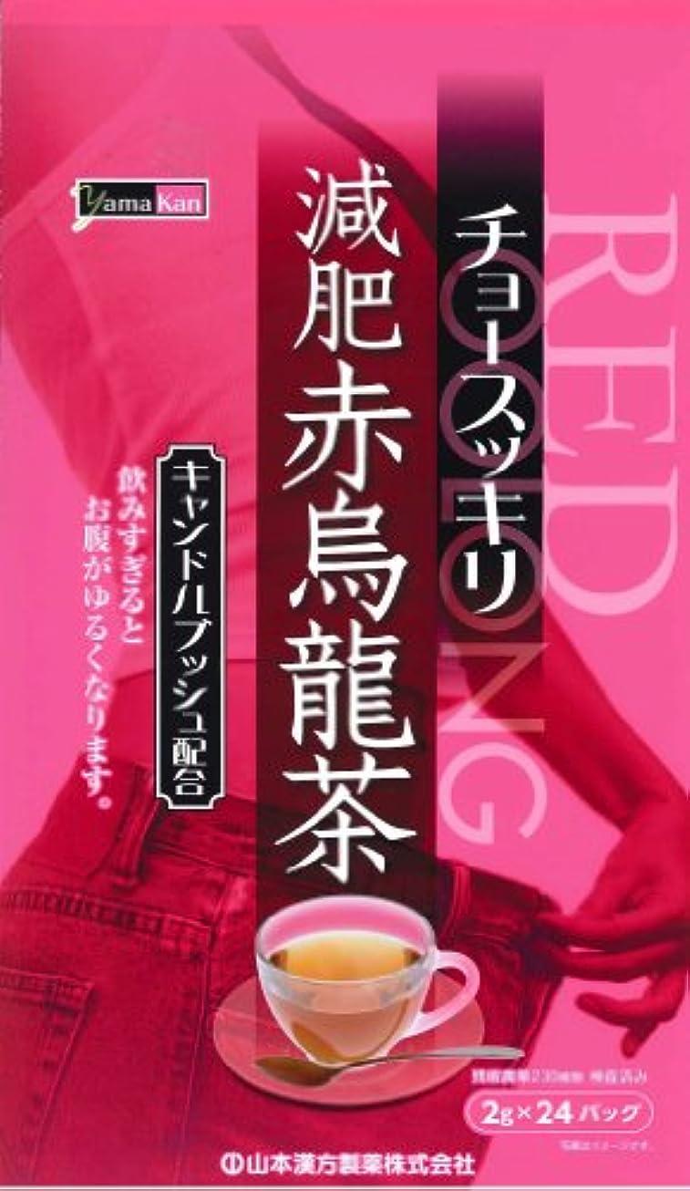 無視用心鉄道駅山本漢方製薬 減肥赤烏龍茶 8gX24H