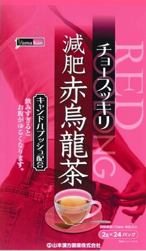バンカークラッシュテレビ局山本漢方製薬 減肥赤烏龍茶 8gX24H
