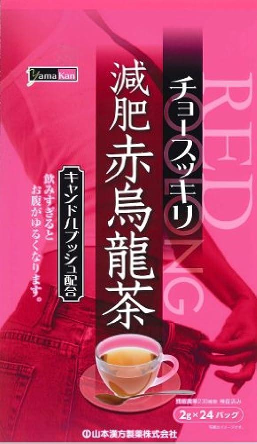 山本漢方製薬 減肥赤烏龍茶 8gX24H