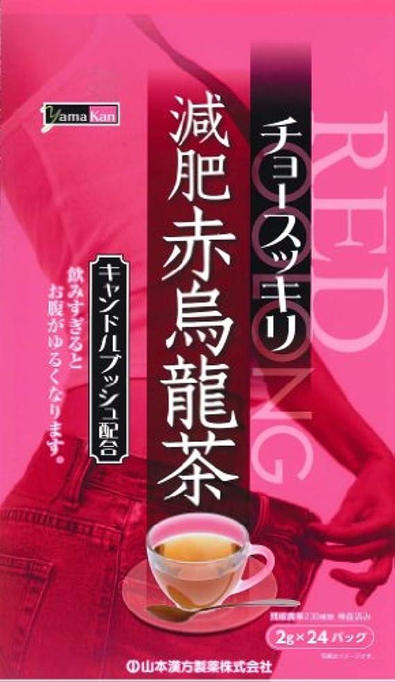 くしゃみ絶妙グレード山本漢方製薬 減肥赤烏龍茶 8gX24H