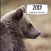 2019 Weekly Planner: Grizzly Bear in Nature Calendar Book, Days of Week, & Lined Spaces for Priorities & Notes