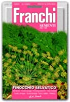 【種子】【FRANCHI社】【62/18】ワイルドフェンネル