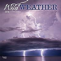 Wild Weather 2018 Wall Calendar [並行輸入品]