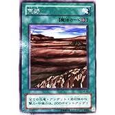 遊戯王 荒野 レア (特典付:サービスカード、希少カード画像) 《ギフト》