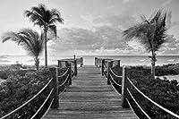 カリブ海岸の風景、砂浜、ヤシの木、海 キャンバスの 写真 ポスター 印刷 海 (60cmx40cm)