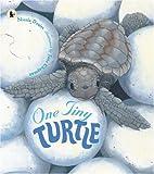 One Tiny Turtle
