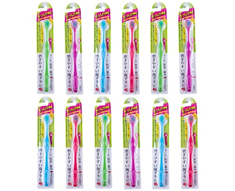 伝導率争いエゴイズム歯ブラシ職人Artooth ® 磨きやすい歯ブラシ 6列ワイドタイプ ふつうLT-30 (12本パック)