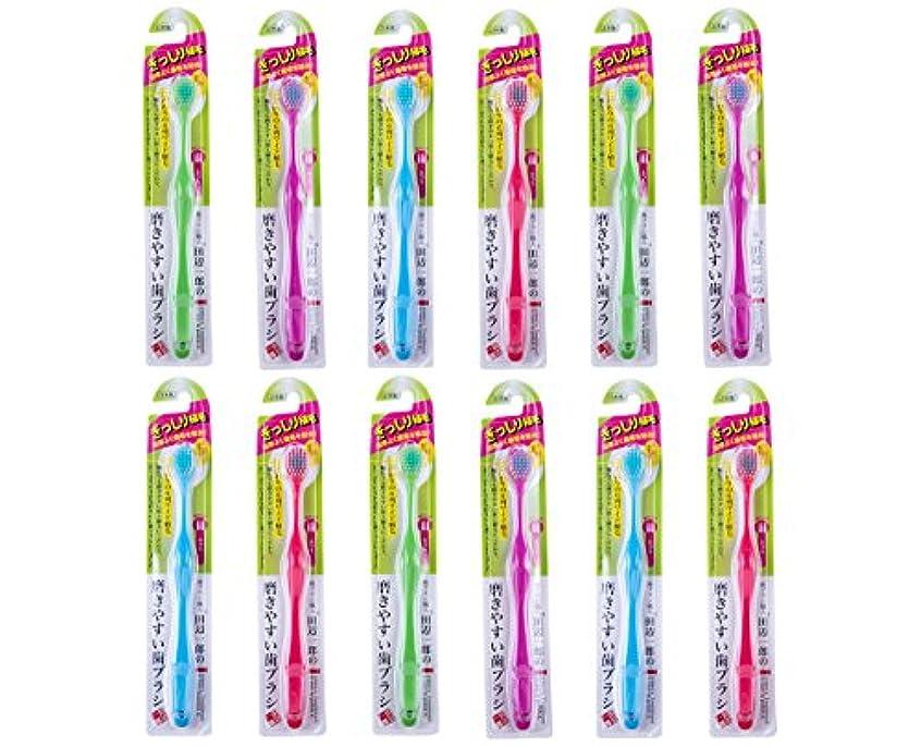 歯ブラシ職人Artooth ® 磨きやすい歯ブラシ 6列ワイドタイプ ふつうLT-30 (12本パック)