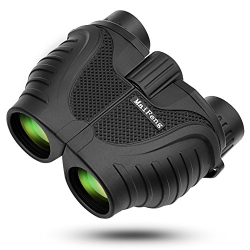 HUASUN 双眼鏡 10倍 超広角 10 X 25 高倍率 望遠鏡 昼夜兼用 はっきり可視範囲114m~1000m ズーム 双眼鏡 コンサート/旅行/アウトドア/試合/星野観察/ライブ/鳥観察など対応