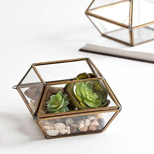 【アジア工房】 ガラスと真鍮でできた10面体のテラリウム(63110) [並行輸入品]