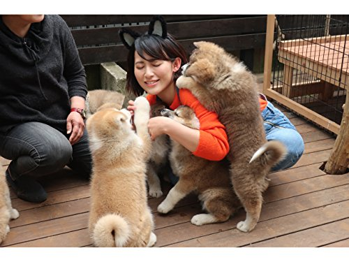 No.8 動物の歯医者さんと秋田犬に会ってきたの巻
