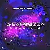 Weaponized Soul 2