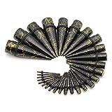 PiercingJ【1.6mm-20mm・14サイズ28点セット】アクリル 拡張器 ボディピアス ボディーピアス 耳拡 トンネルピアス エキスパンダー 金線メッキ (ブラック)