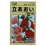 カネコ種苗 園芸・種 KS100シリーズ 立あおい 八重咲・混合 草花100 060