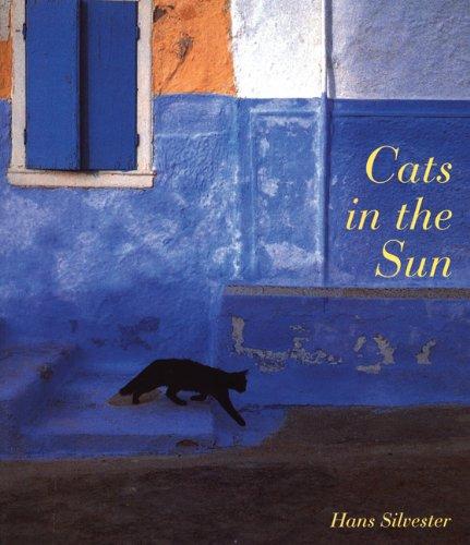 Cats in the Sunの詳細を見る