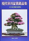 現代皐月盆栽銘品集―さつきの魅力を探る (別冊さつき研究)