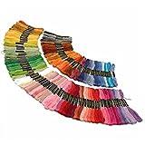 Zafina 刺繍糸 手芸用糸 刺しゅう糸  クロスステッチ  初心者カラフル 縫い糸 刺繍ツール (100本セット)