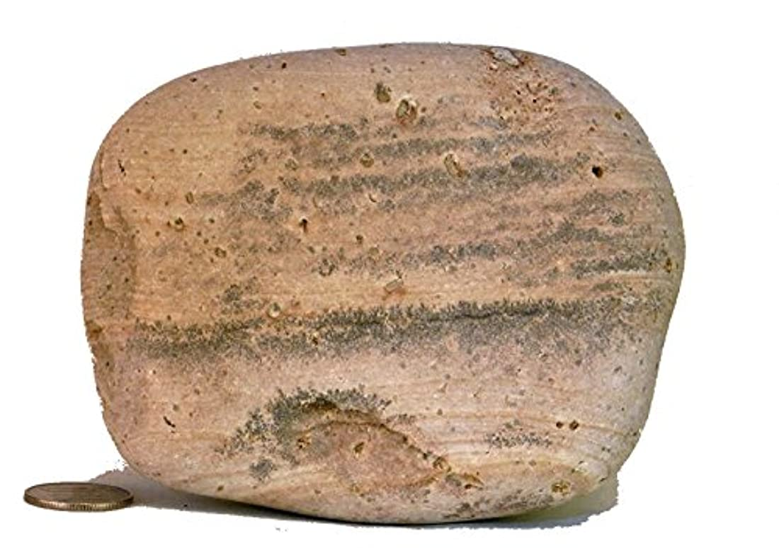 メトリック暖かさ胚芽【薬石苑】姫川薬石 盆石 水石 超特選 忍石 天然石絵 739g
