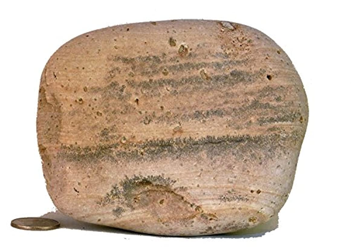 クスコボタンポンド【薬石苑】姫川薬石 盆石 水石 超特選 忍石 天然石絵 739g