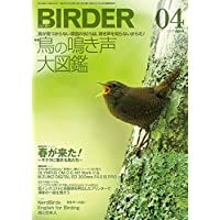 BIRDER(バーダー)2017年4月号 鳥の鳴き声 図鑑