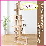 Lサイズ 突っ張り5段BOX2本脚 杉にゃん 国産 天然木