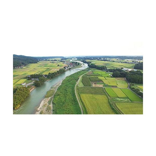 【精米】栃木県産 無洗米 コシヒカリ 平成27年産の紹介画像5
