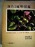 原色日本植物図鑑〈草本篇 第1〉合弁花類 (1957年) (保育社の原色図鑑〈第15〉)
