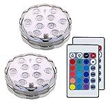 Lifeholder 潜水ライト イルミネーション 水中照明 電池式RGB LEDライト リモコン付き 花瓶 金魚鉢 ハーバリウム