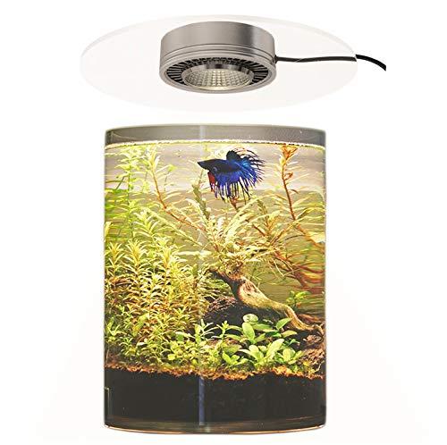 BARREL アクアリウム テラリウム ライト 丸型水槽用 アクリル板 植物育成LED ボトルアクアリウム 苔テラリウム 照明 LED 蓋 (ライトのみ)