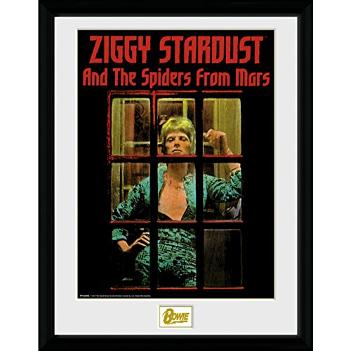 1周忌追悼 DAVID BOWIE - ZIGGY STARDUST/ インテリア/ 【公式 / オフィシャル】
