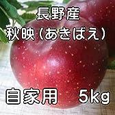 ご家庭用に!長野産あきばえりんご 5kg