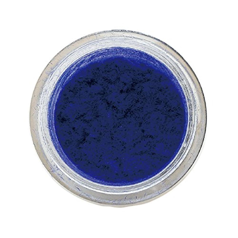 完璧な経験的公式ベルベットネイル 1g ブルー