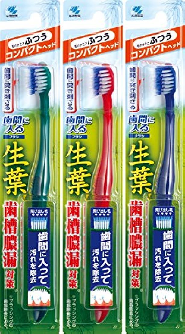 困惑する悪性誠実【まとめ買い】生葉(しょうよう)歯間に入るブラシ 歯ブラシ コンパクト ふつう×3個