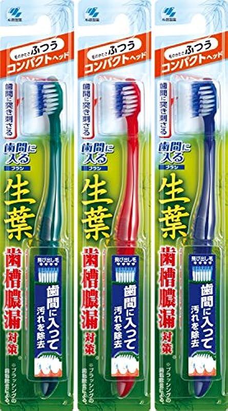 五十報酬評論家【まとめ買い】生葉(しょうよう)歯間に入るブラシ 歯ブラシ コンパクト ふつう×3個