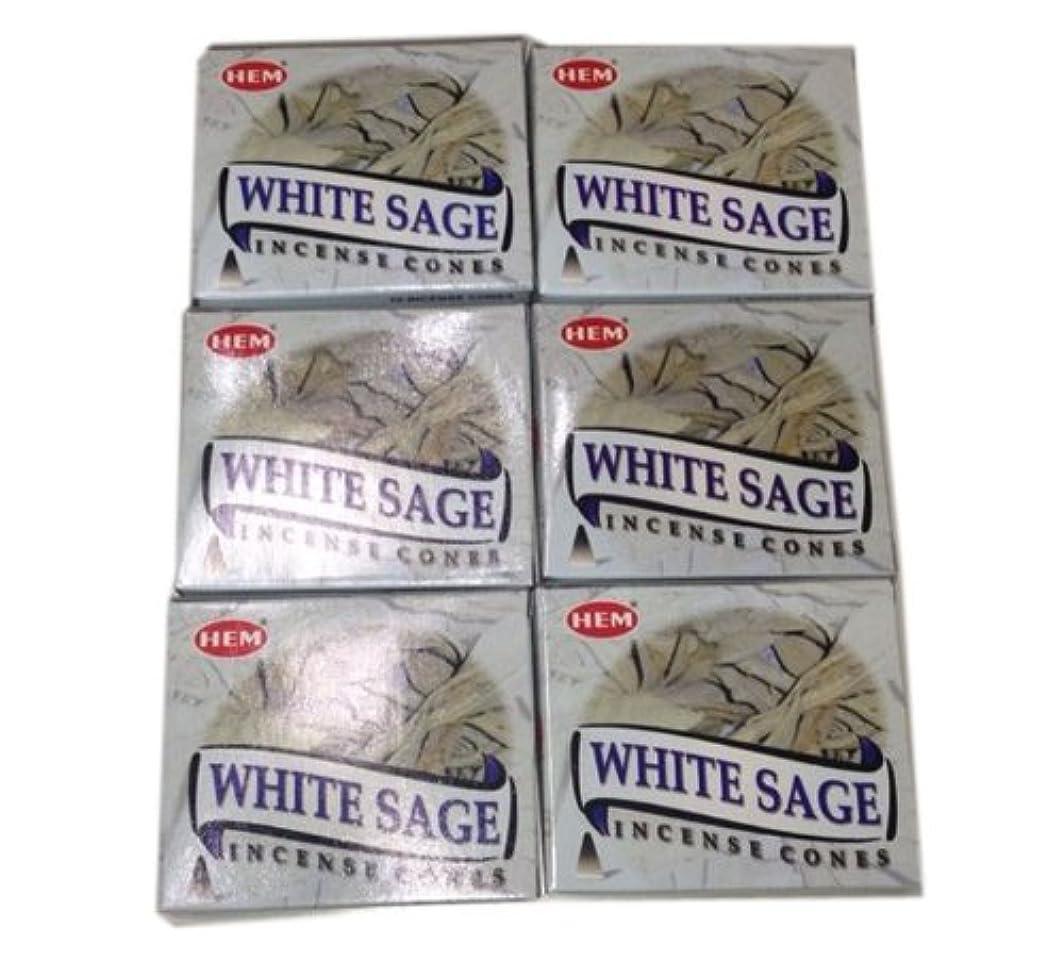 繁雑梨パイプお香コーンタイプ ホワイトセージ 60個入り