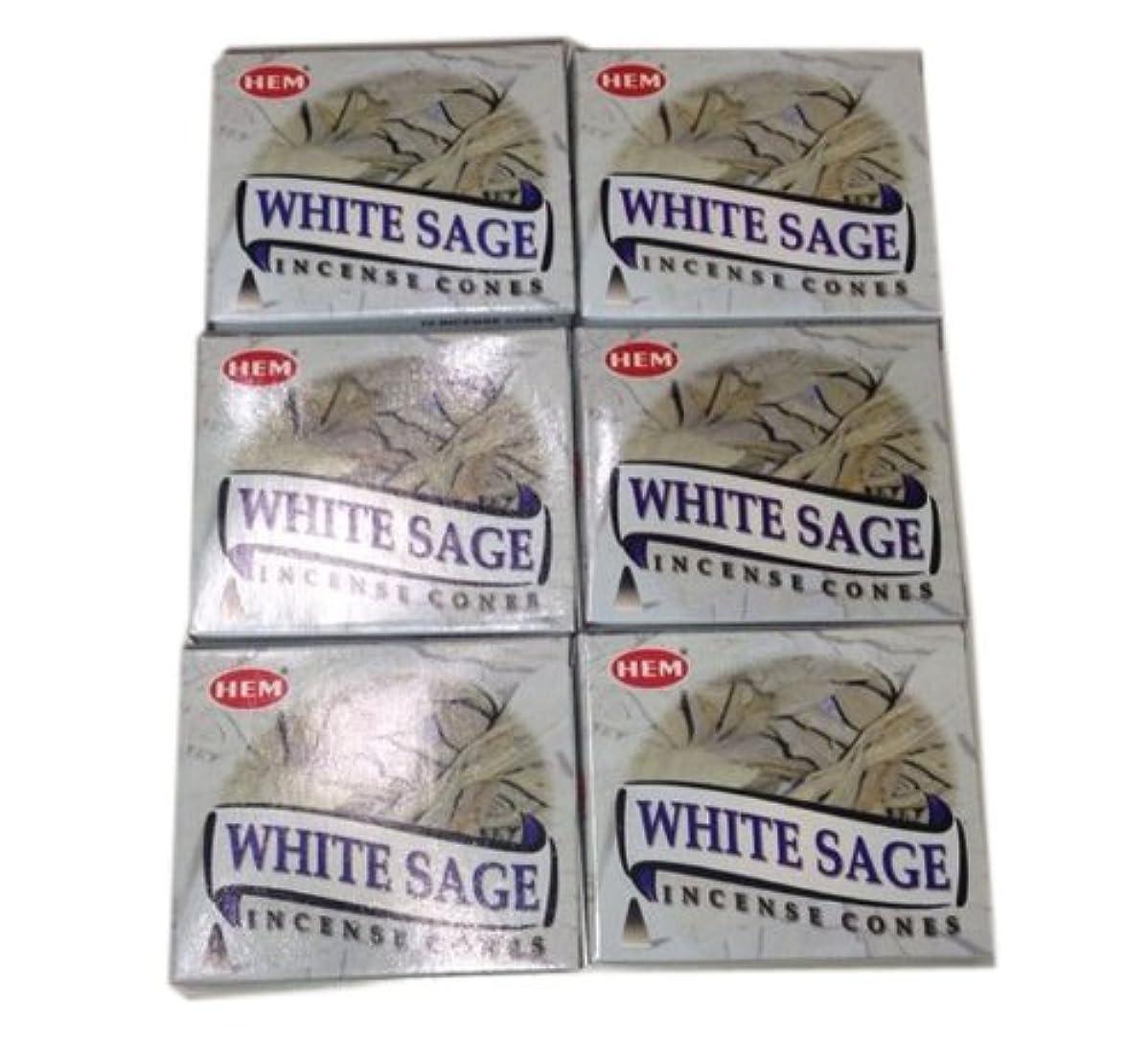 数値葉を集める吸収剤お香コーンタイプ ホワイトセージ 60個入り