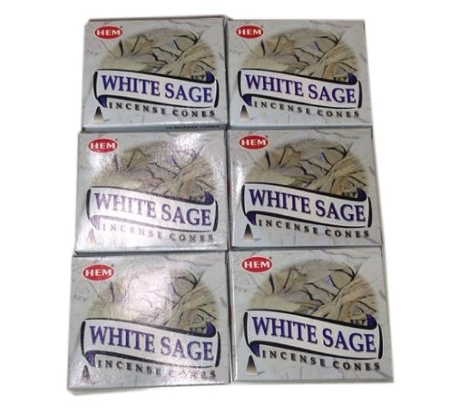 心のこもった調べるビリーヤギお香コーンタイプ ホワイトセージ 60個入り