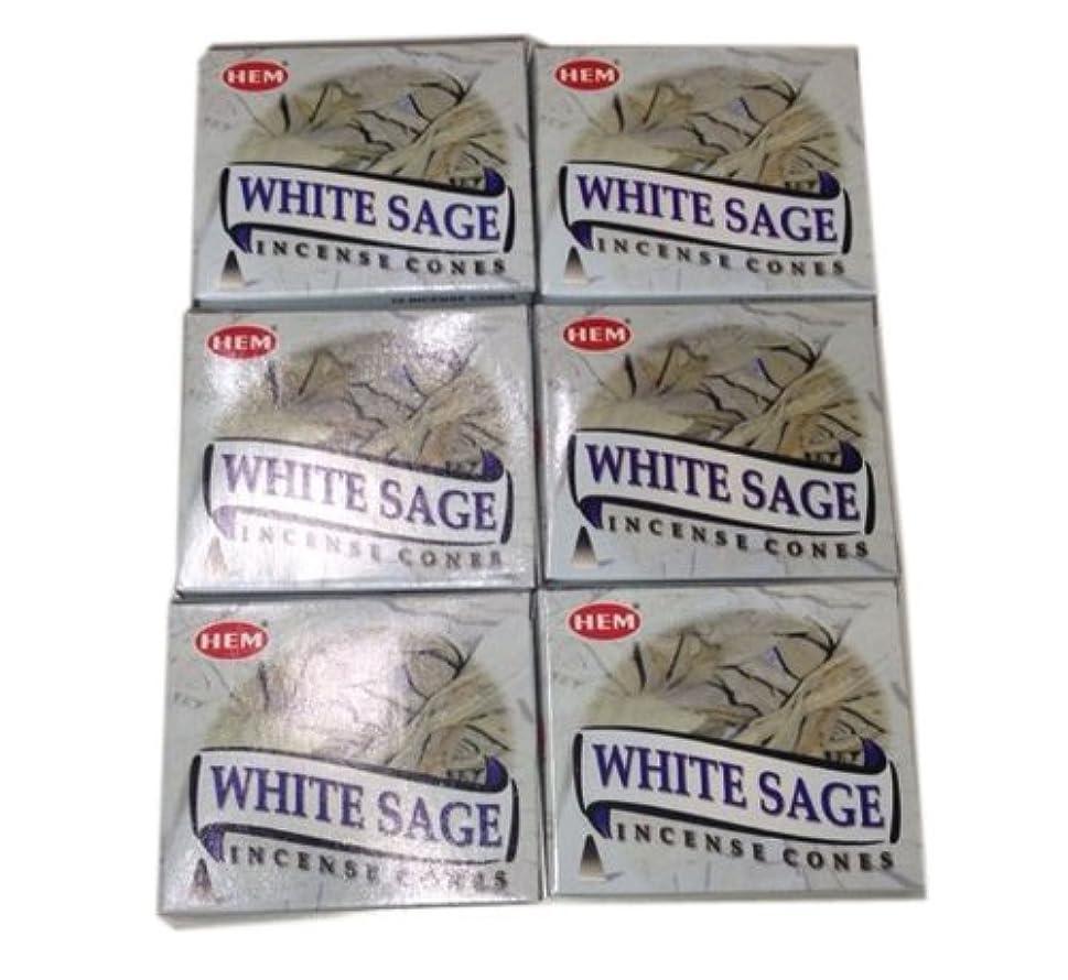 リー新鮮な速いお香コーンタイプ ホワイトセージ 60個入り